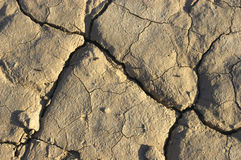 Barren land. Drought Royalty Free Stock Photo