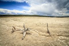 Barren land in Yellowstone National Park, USA Stock Photos