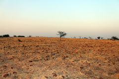 Barren land. Of a east hemispheres of Earth Royalty Free Stock Photo