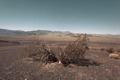 Barren land like Mars. Dry & barren land terrain like Mars Stock Photography