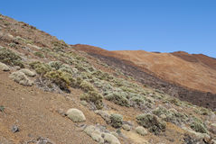 Barren land Stock Image