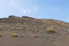 Free Barren Landscape Stock Image - 103289601
