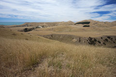 Barren landscape at Cape Kidnappers Royalty Free Stock Images