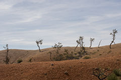 Barren landscape Stock Photos