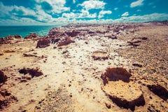 Barren landscape under the sun heat. Petrified forest, Cape Bridgewater, Australia. Royalty Free Stock Photography