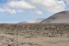 Barren Landscape, Lanzarote Stock Image