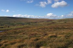 Barren moorland in good weather Stock Photos