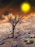 Barren planet. Desert planetscape with a dead tree on foreground. Digital illustration Stock Images