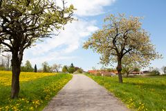 Barren Road Through Summer Landscape on Czech Countryside Royalty Free Stock Images