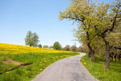 Barren Road Through Summer Landscape on Czech Countryside Stock Image