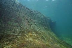Barren rocky reef Royalty Free Stock Photo