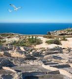 Barren shores of Malta Royalty Free Stock Photos