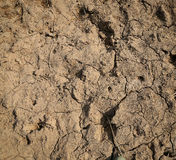 Barren soil Royalty Free Stock Images
