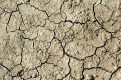 Barren soil Stock Photo