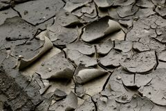 Barren soil in cracks background Royalty Free Stock Image