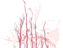 Barren tree branches. Illustration on barren tree branches on white background Stock Images