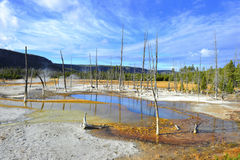 Barren volcanic landscape, yellowstone national park, usa Royalty Free Stock Photos
