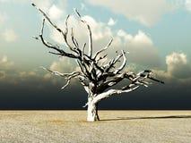 Barren Wilderness. An image of a dead tree within a barren wilderness landscape Stock Image