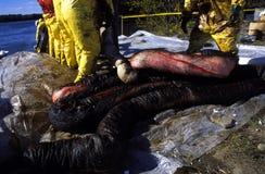 Barrera del derramamiento de petróleo Imagen de archivo libre de regalías