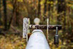 Barrera en el bosque con una cerradura aherrumbrada imagenes de archivo