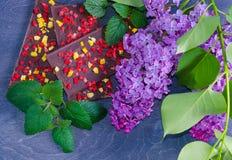Barres de chocolat avec la pêche et les fraises sèches Photos libres de droits