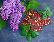 Barres de chocolat avec la pêche et les fraises sèches Photo libre de droits
