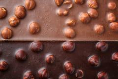 Barres de lait et de chocolat de noir avec la noisette Image stock