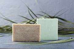 Barres de savon et d'usine sur la surface grise Concept des produits de bain photos stock