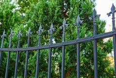 Barres en acier pointues noires de barrière dans la perspective de végétation verte photographie stock libre de droits
