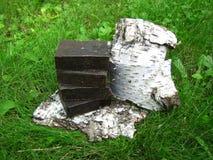 Barres faites main naturelles de savon de goudron sur le backgroun d'écorce d'herbe et de bouleau Photos libres de droits