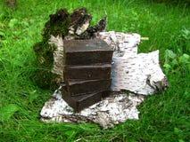 Barres faites main naturelles de savon de goudron sur le backgroun d'écorce d'herbe et de bouleau Images libres de droits