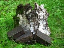 Barres faites main naturelles de savon de goudron sur le backgroun d'écorce d'herbe et de bouleau Images stock
