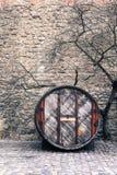 barrette стоковые фото