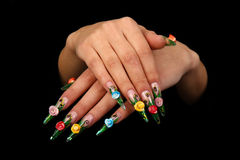 Barrette umane con l'unghia lunga e la bella m. Fotografie Stock Libere da Diritti