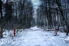Barriär i skogen royaltyfri fotografi