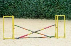 Barriär som hoppar på häst på löparbanan Royaltyfri Foto