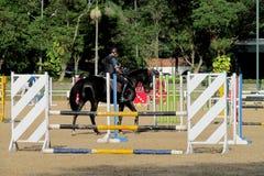 Barriär som hoppar på häst på löparbanan Arkivbilder