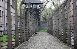 Barrière électrique dans l'ancien camp de concentration nazi Auschwitz I photo stock