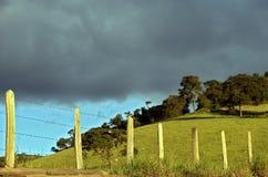 Barrière allumée par le soleil de fin de l'après-midi Photographie stock