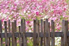 Barrière avec la fleur Photo stock