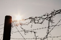 Barrière With Barb Wire Image libre de droits
