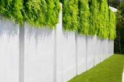 Barrière blanche avec une herbe verte Photo libre de droits