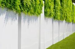 Barrière blanche avec une herbe verte Photographie stock