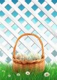 Barrière blanche de jardin avec l'herbe de panier de Pâques et les fleurs, fond de ressort Photographie stock libre de droits