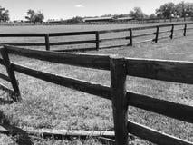 Barrière cassée à la ferme de cheval Photo stock