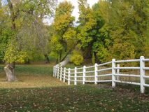 Barrière d'enroulement au parc Images libres de droits