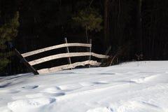 Barrière dans une forêt Photo stock