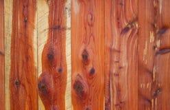 Barrière de cèdre rouge oriental Photographie stock libre de droits