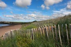 Barrière de conservation de dune de sable et herbe sauvage plantant en Irlande images stock