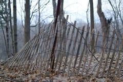 Barrière de forêt tombant au-dessus de avec des arbres à l'arrière-plan image stock